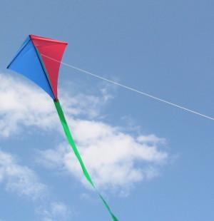 single-line-kite-skylark-1-1473946
